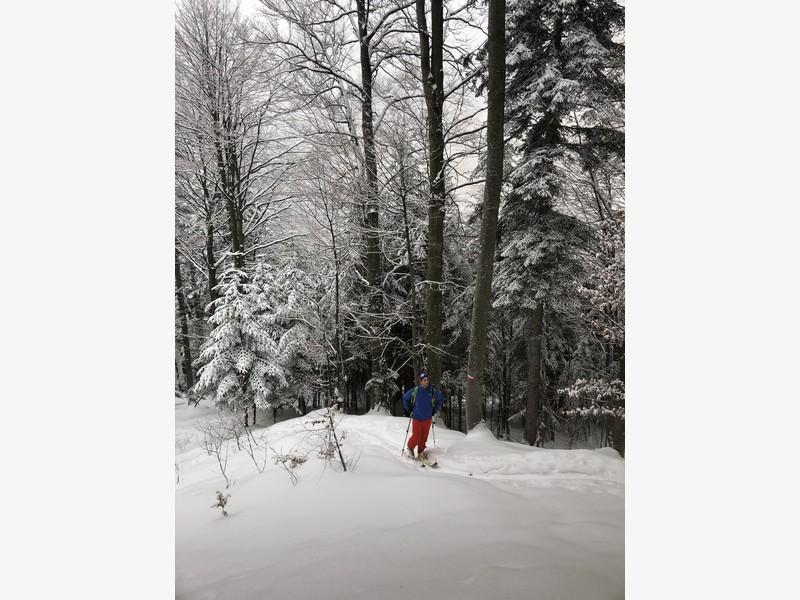 cima di bo scialpinismo guide alpine proup (12)