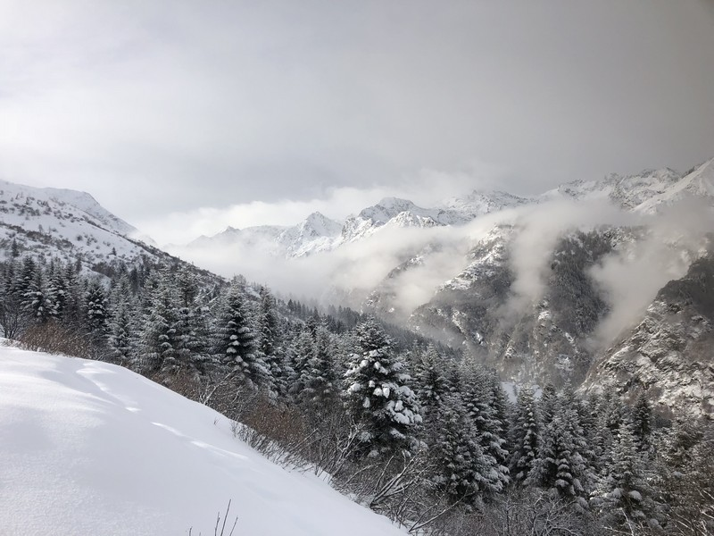 cima di bo scialpinismo guide alpine proup (24)