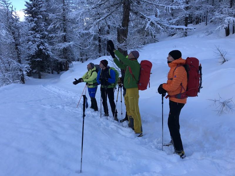 cascata di patrì guide alpine proup (1)