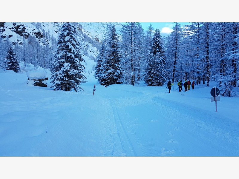 cascata di patrì guide alpine proup (38)
