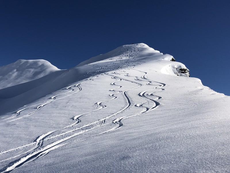 corona troggi alpe devero campo artva (2)