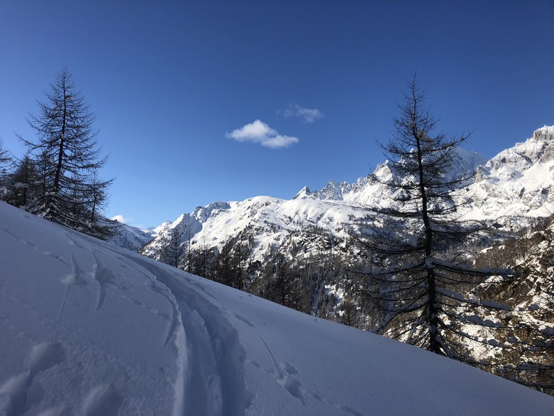 corona troggi alpe devero campo artva (37)