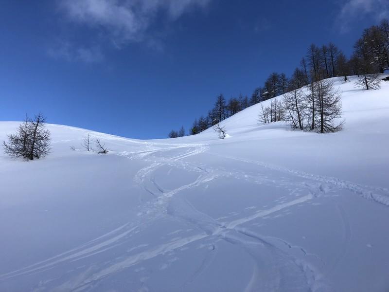 corona troggi alpe devero campo artva (44)