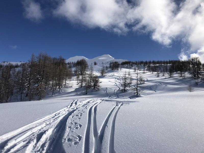 corona troggi alpe devero campo artva (47)
