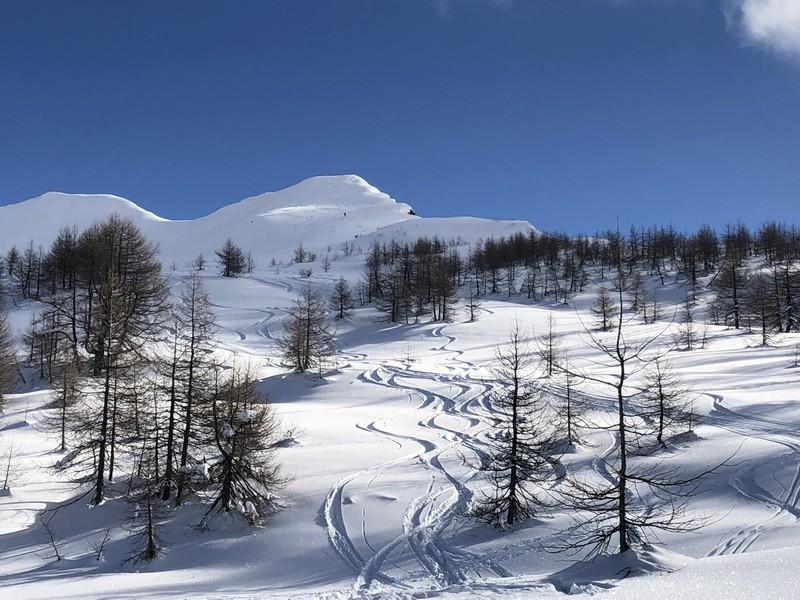 corona troggi alpe devero campo artva (48)