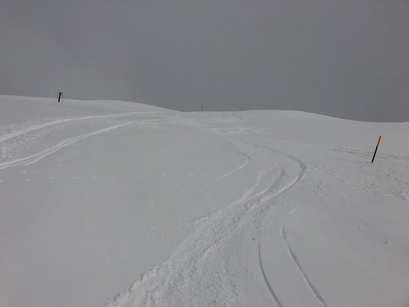 crevacol scialpinismo proup (14)