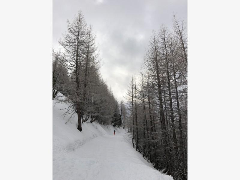 crevacol scialpinismo proup (4)