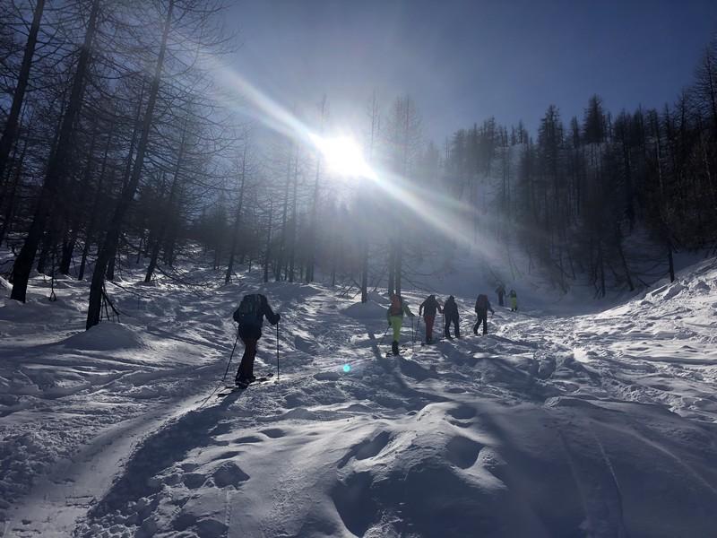 corso splitboard guide alpine proup (12)