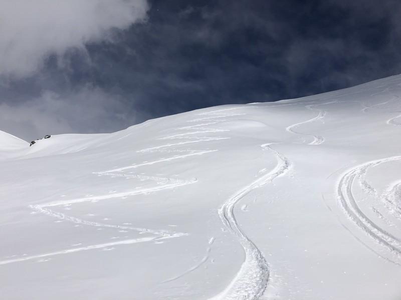 monte facciabella scialpinismo guide alpine proup (30)