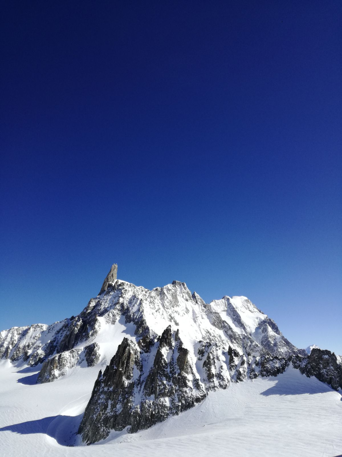 vallee blanche guide alpine proup (62)