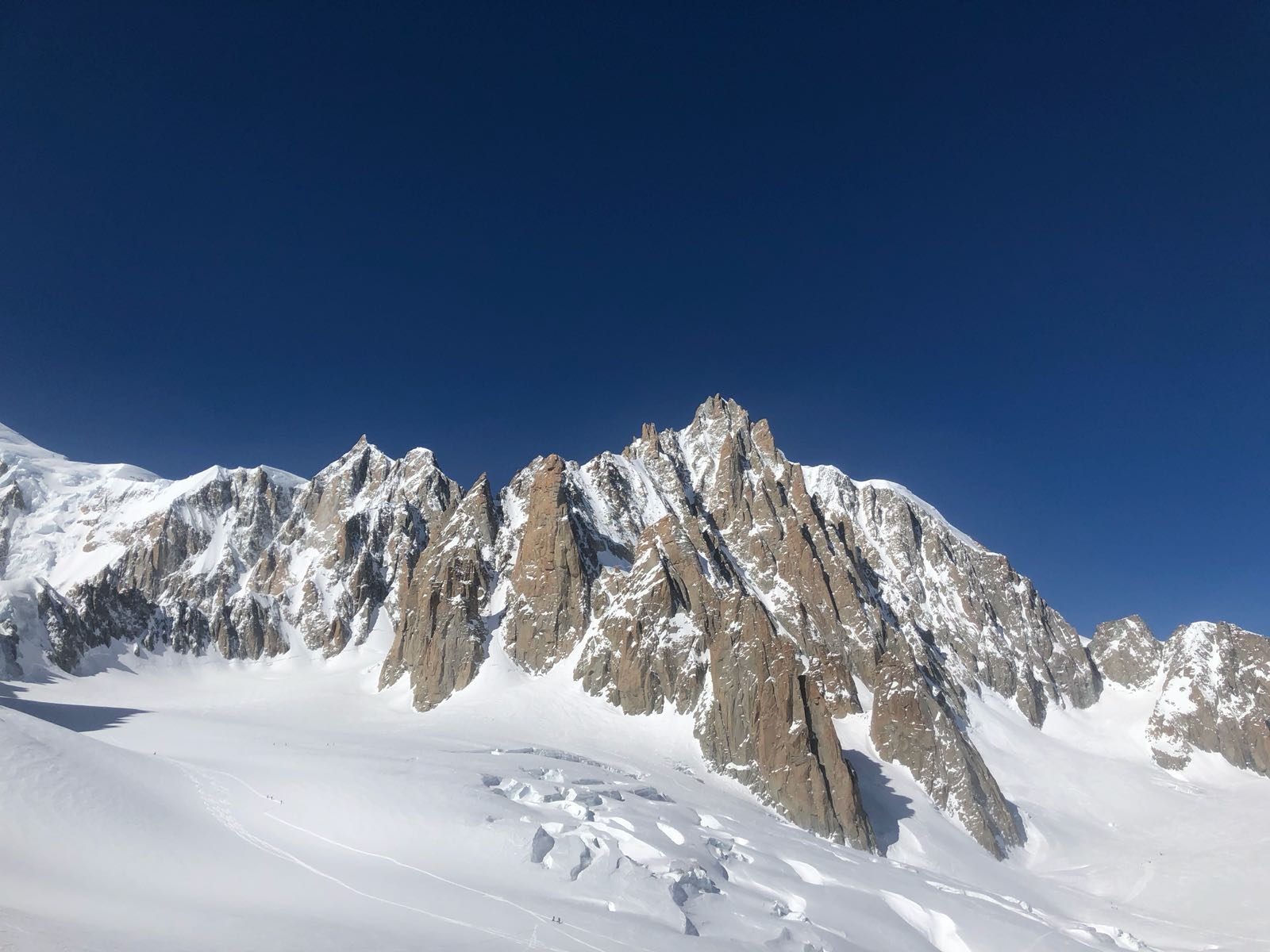vallee blanche guide alpine proup (78)