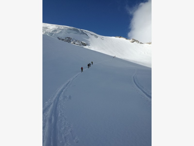 tour gran paradiso guide alpine proup (16)