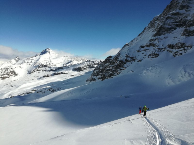 tour gran paradiso guide alpine proup (23)