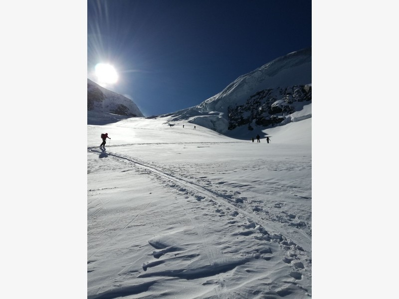 tour gran paradiso guide alpine proup (27)