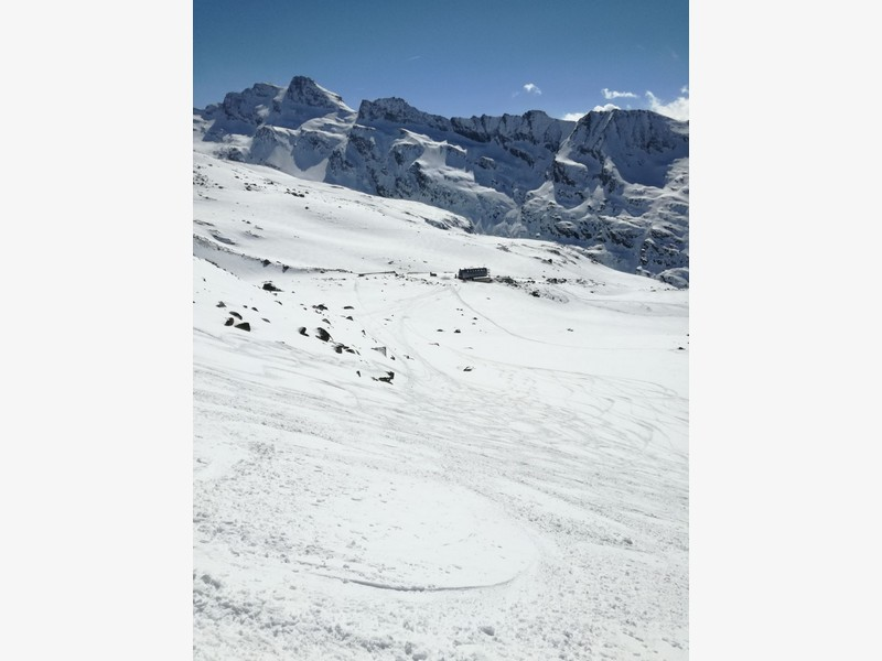 tour gran paradiso guide alpine proup (64)