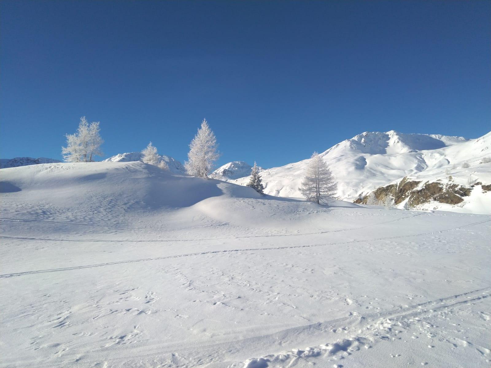 scialpinismo guide alpine proup sempione (3)