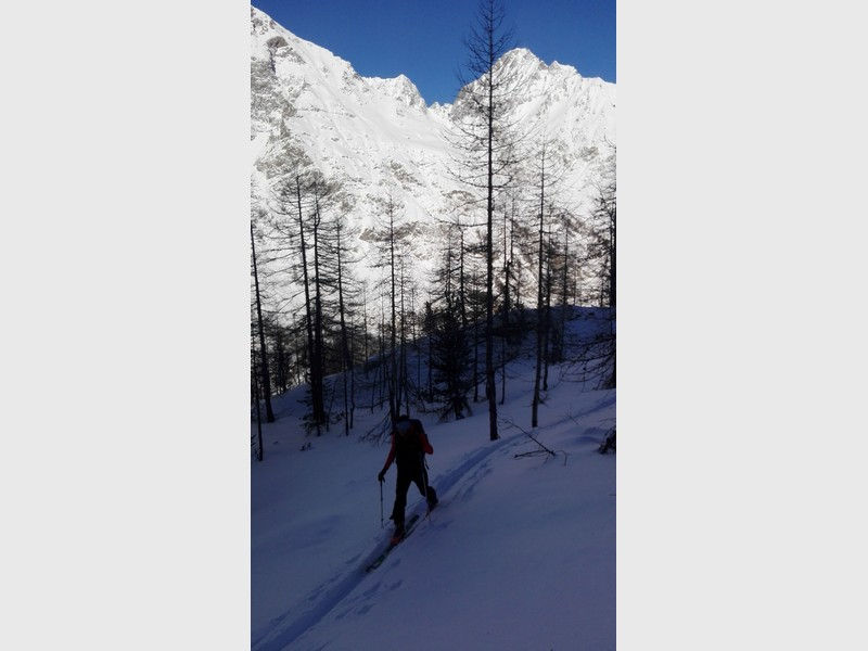 Entrelor_scialpinismo_guidealpine_proupteam_powder (6)