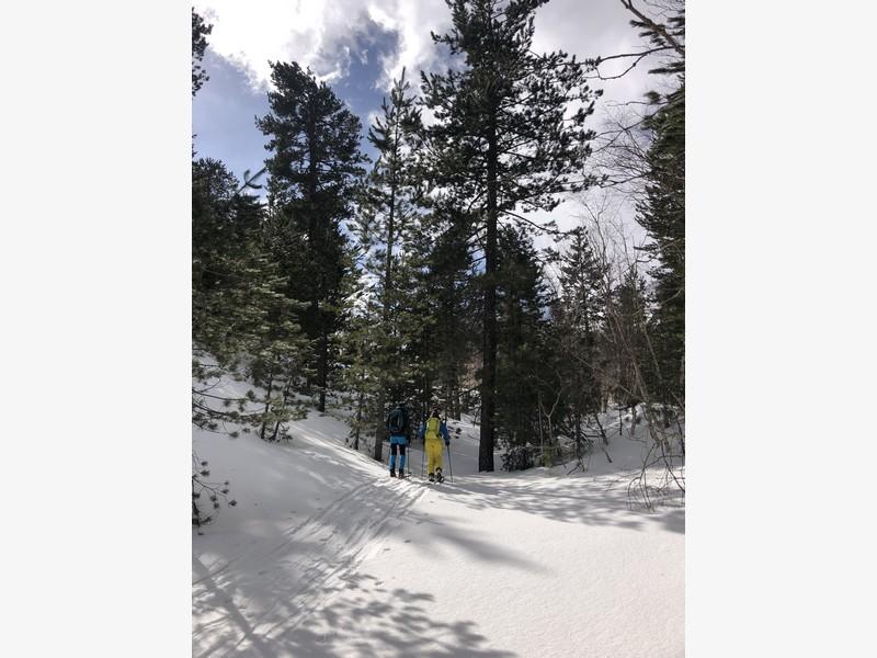 etna scialpinismo guide alpine proup (53)