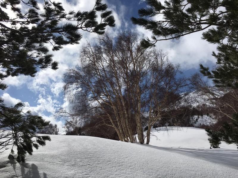 etna scialpinismo guide alpine proup (76)