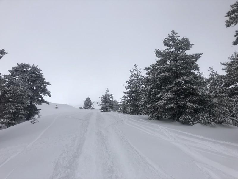 etna scialpinismo guide alpine proup (93)