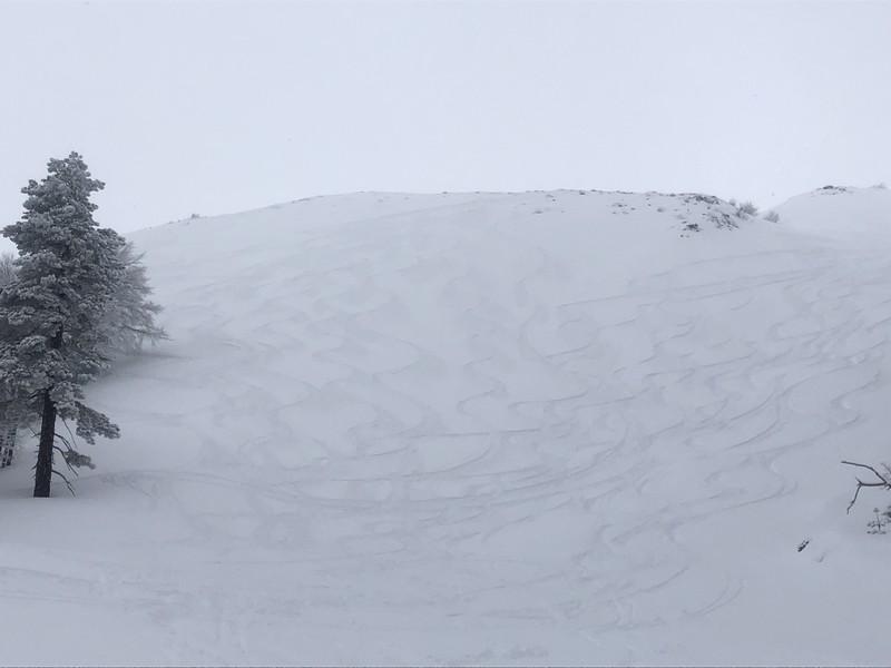 etna scialpinismo guide alpine proup (98)