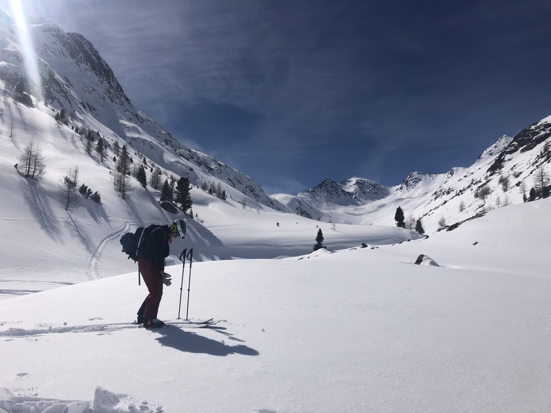 heliski livigno guide alpine proup freeride (63)