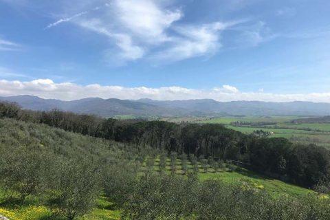 Trekking in Toscana OTT 2020